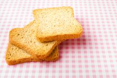 Toast on picnic tablecloth Royalty Free Stock Photo