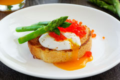 toast with poached egg Royalty Free Stock Image