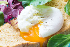 Toast with poached egg and green salad, close up Royalty Free Stock Photo