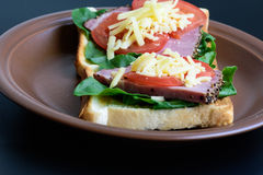 Toast with roasted meat, tomatoes, sorrel and mozzarella cheese Stock Images