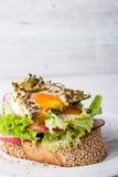 Toast with salad , vegetable and egg vertical Royalty Free Stock Image