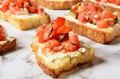 Toast with salsa sauce. On buffet table royalty free stock images