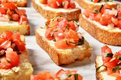 Toast with salsa sauce. On buffet table stock photos
