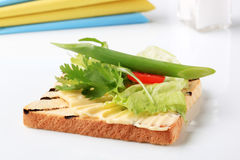 Toast sandwich Royalty Free Stock Photo