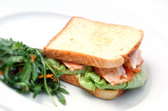 Toast sandwich with chicken, tomatoes, lettuce and salad on white plate, isolated on white background Royalty Free Stock Photos