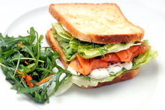 Toast sandwich with salmon, vegetable and salad on white plate Stock Photos
