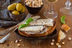 Toast with sardines Stock Photo