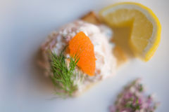 Toast Skagen shrimp sandwich on white table with citrus on the s Stock Images