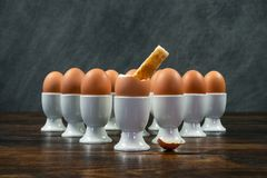 Toast Soldier Dipped Into Boiled Egg in Egg Cup on a Table royalty free stock image