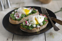 Toast with spinach and egg Royalty Free Stock Photography