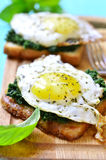 Toast with spinach and fried egg. stock image