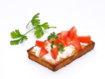 Toast with toamatoes Royalty Free Stock Images