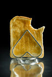 Toast in a Toast Rack Royalty Free Stock Images