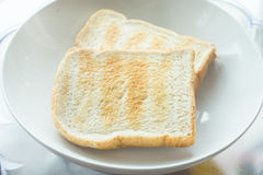Toast. In a white plate Royalty Free Stock Photo