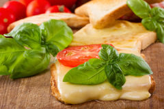 Toast With Melted Cheese Stock Photos