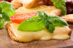Toast With Melted Cheese Royalty Free Stock Images