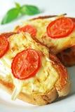 toasted сыр Стоковые Изображения RF