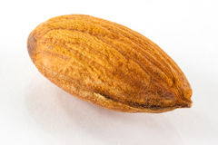 Toasted almond Royalty Free Stock Photography