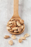 Toasted almonds Royalty Free Stock Photos