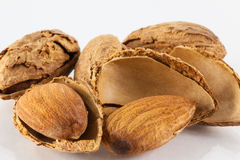 Toasted almonds Stock Image