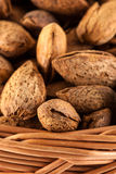 Toasted almonds Royalty Free Stock Images