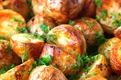 The toasted baked potato strewed with herbs Stock Image