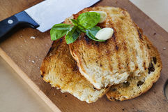 Toasted bread garlic basil Royalty Free Stock Images