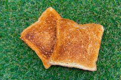 Toasted bread on the green grass stock photos