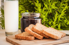 Toasted bread with honey and honey dipper Stock Photography