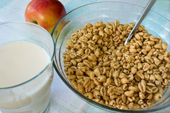 Toasted cereal and hot milk Stock Images