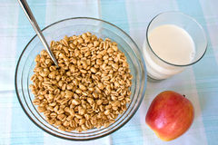 Toasted cereal and hot milk Royalty Free Stock Photo
