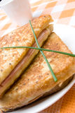 Toasted cheese and ham sandwiches Royalty Free Stock Photos