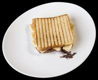 Toasted Cheese Sandwich Royalty Free Stock Photos