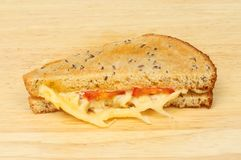 Toasted cheese sandwich on a board. Toasted emmental cheese and tomato sandwich on a wooden chopping board Royalty Free Stock Photo