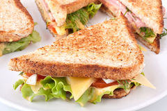 Toasted club sandwiches Stock Photography