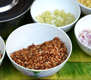 Toasted coconut Royalty Free Stock Images