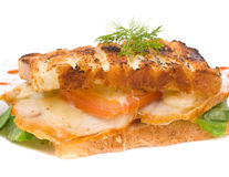 Toasted ham and cheese sandwich Royalty Free Stock Photos