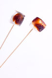 Toasted marshmallow Stock Photography