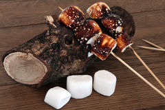 Toasted Marshmallow Treats Royalty Free Stock Image