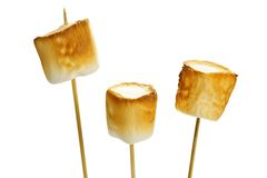 Toasted marshmallows Royalty Free Stock Photo