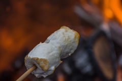 Toasted marshmallows Stock Images