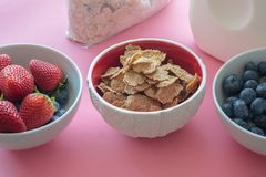 Toasted Oatmeal Flakes with Milk, Strawberries and Blueberries royalty free stock photography