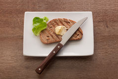 Toasted rye bread on the white plate Stock Photos
