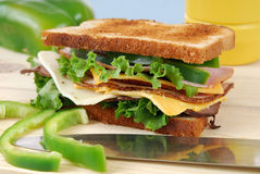 Toasted Sandwich Stock Image