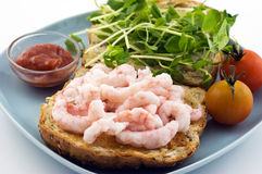 Toasted shrimp sandwich Royalty Free Stock Photo