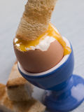 Toasted Soldier being Dipped into a Runny Yolk Royalty Free Stock Photography