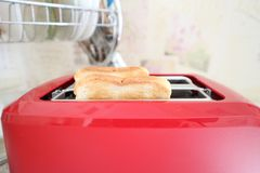 Toasted toasts for sandwich royalty free stock photo