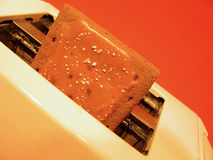 Toaster Tart. A chocolate pastry (tart) popped out of a white toaster. Red background. Focus on pastry stock image