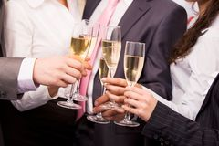 Toasting Royalty Free Stock Images