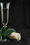 Toasting with champagne and rose Stock Photography